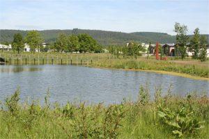 Wasserfläche im Industriepark Region Trier